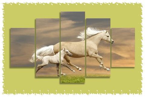 Akhal-Teke & Colt Prints on Canvas