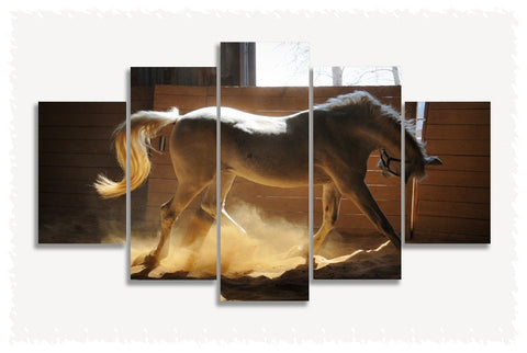 Horse Dust Prints on Canvas