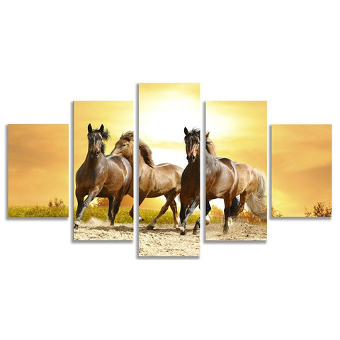 Horse Run In The Sun Prints on Canvas