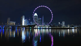 Singapore: Transfers + City Tour+ Flyer