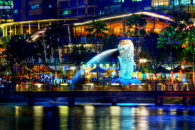 Singapore: Transfers + City Tour + Indian Dinner Coupons (without transfer)