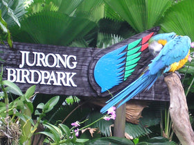 Singapore: Transfers + City Tour + Jurong Bird Park + Indian Dinner Coupons (without transfer)