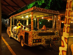 Singapore: Transfers + City Tour + Jurong Bird Park + Night Safari + Indian Dinner Coupons (without transfer)