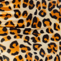 Leopard Kitty Kat Set