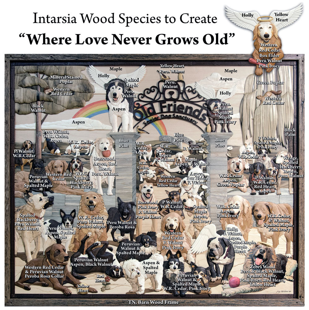 Wood used for the Intarsia Old Friends Senior Dog Sanctuary