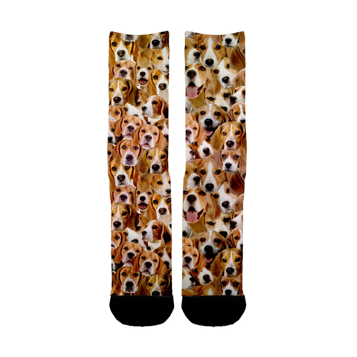 Beagles Face Socks