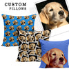 Image of Custom Pet Pillow - Shweeet