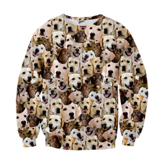 Labrador Retriever Faces Sweater