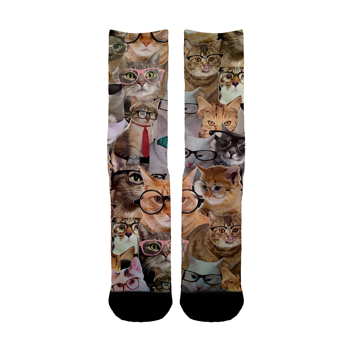 Cats Glasses Socks