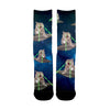 Image of UFO Laser Cats socks