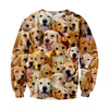 Image of Golden Retriever Faces Sweater