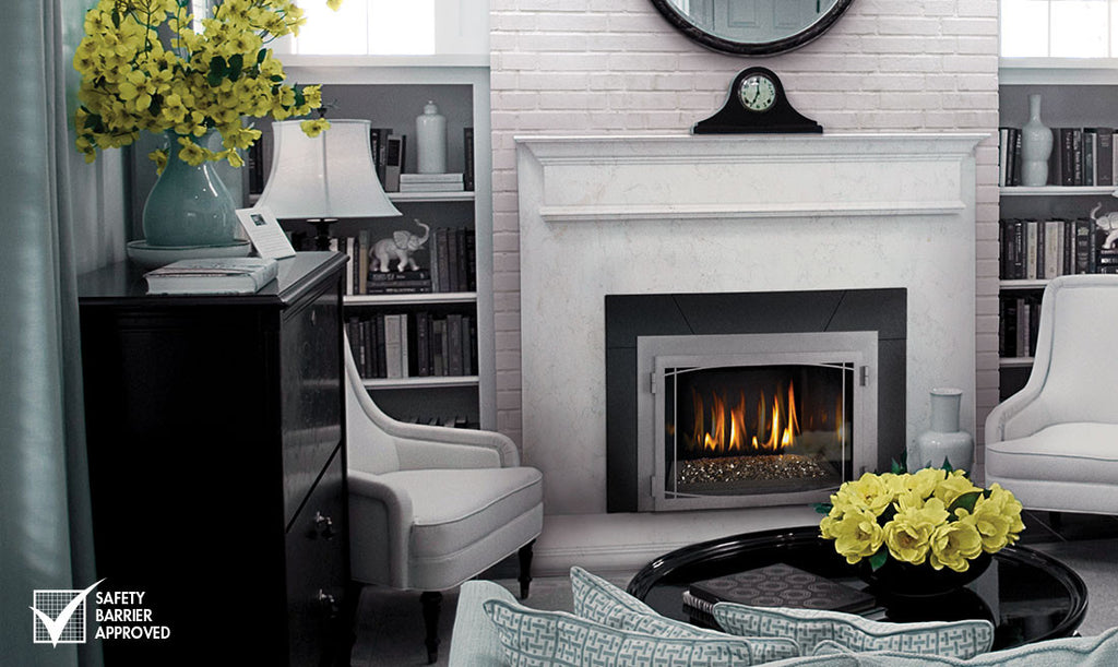 Napoleon Infrared 3 Direct Vent Gas Fireplace Insert Topaz