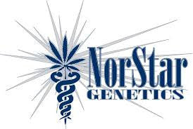Norstar Genetics 2016 Collection