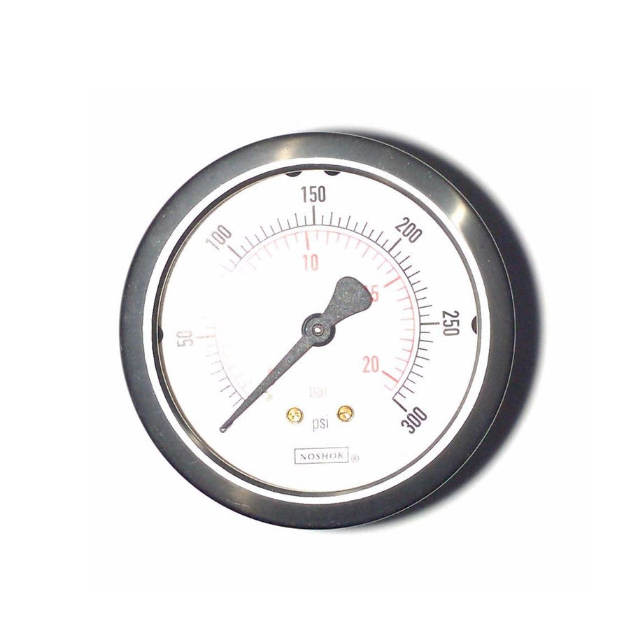 Kirby Morgan Gauge, 0 - 300 PSI, L.P.