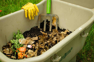 Should I Be Composting?