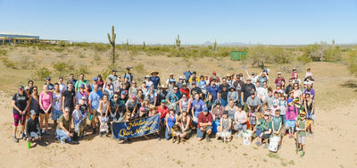 East Mesa Cleanup | Summary