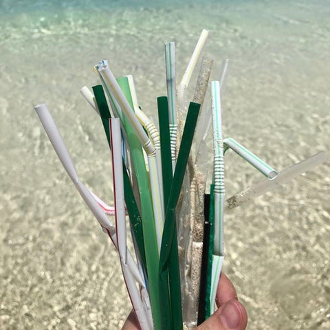 keep-nature-wild-straws