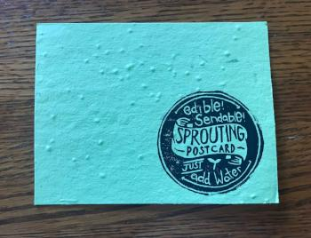 Edible Sendable Sprouting Post Card