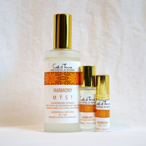 HARMONY Combination Kit - 4 oz. MYST, 9 ml PARFUM, travel MYST.