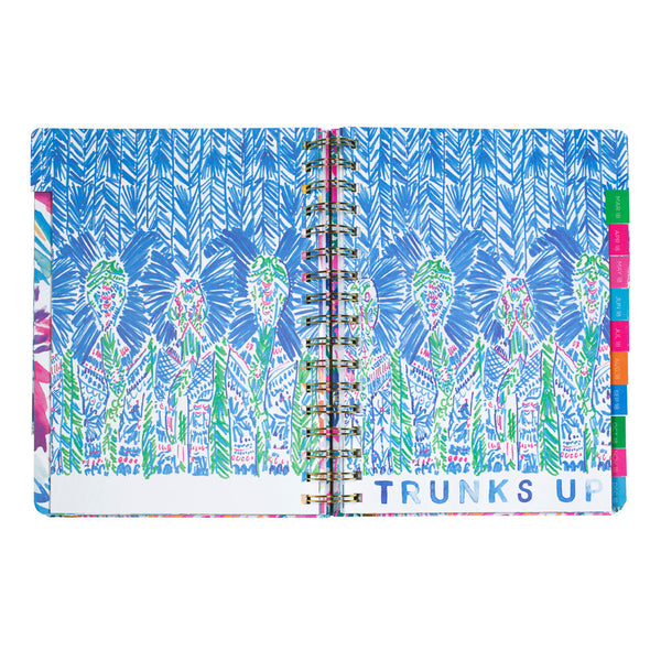Lilly Pulitzer 2017-2018, 17-month Large Planner