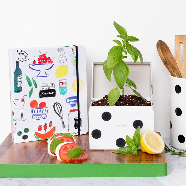 kate spade new york Recipe Box - Deco Dot