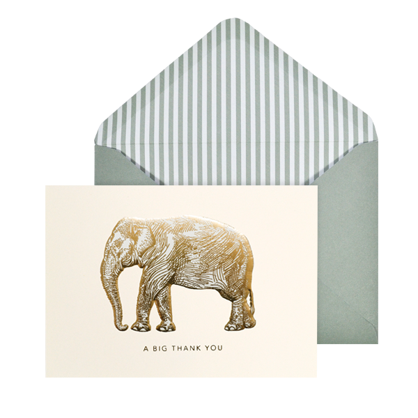 Portico Designs Boxed Note Cards Big Elephant
