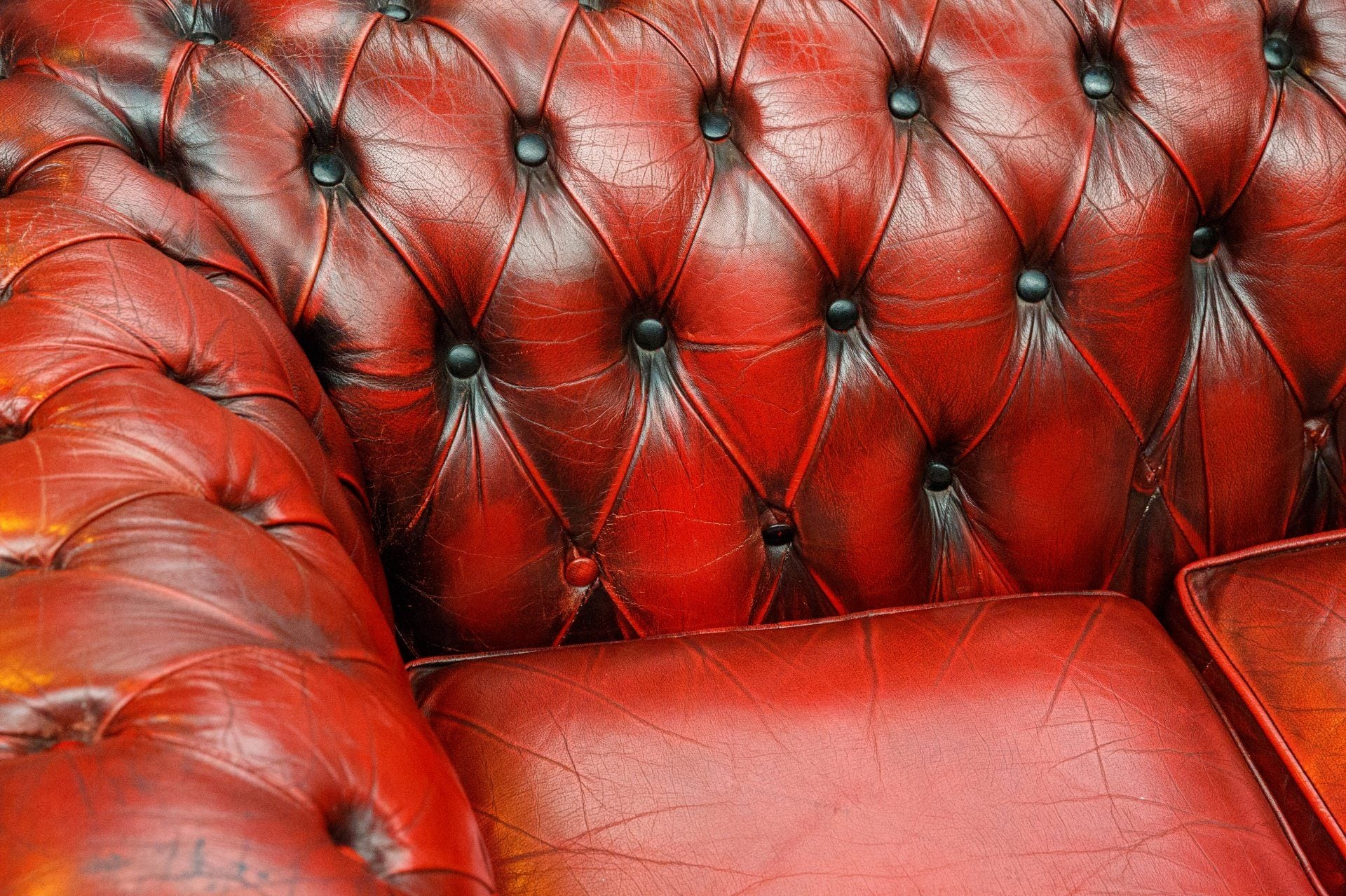 Outstanding How To Clean A Urine Stained Leather Couch Inzonedesignstudio Interior Chair Design Inzonedesignstudiocom