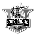Slays Dragons (Sticker)
