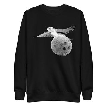 African Swallow Sweatshirt
