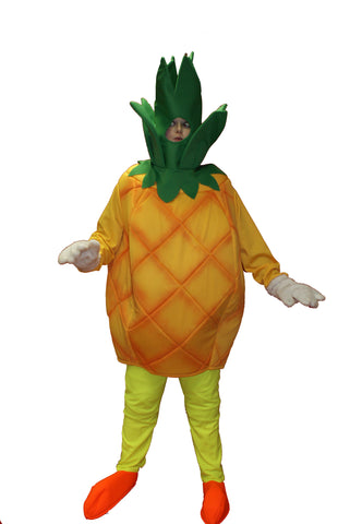 Pineapple ; Rental Includes Deposit&Delivery