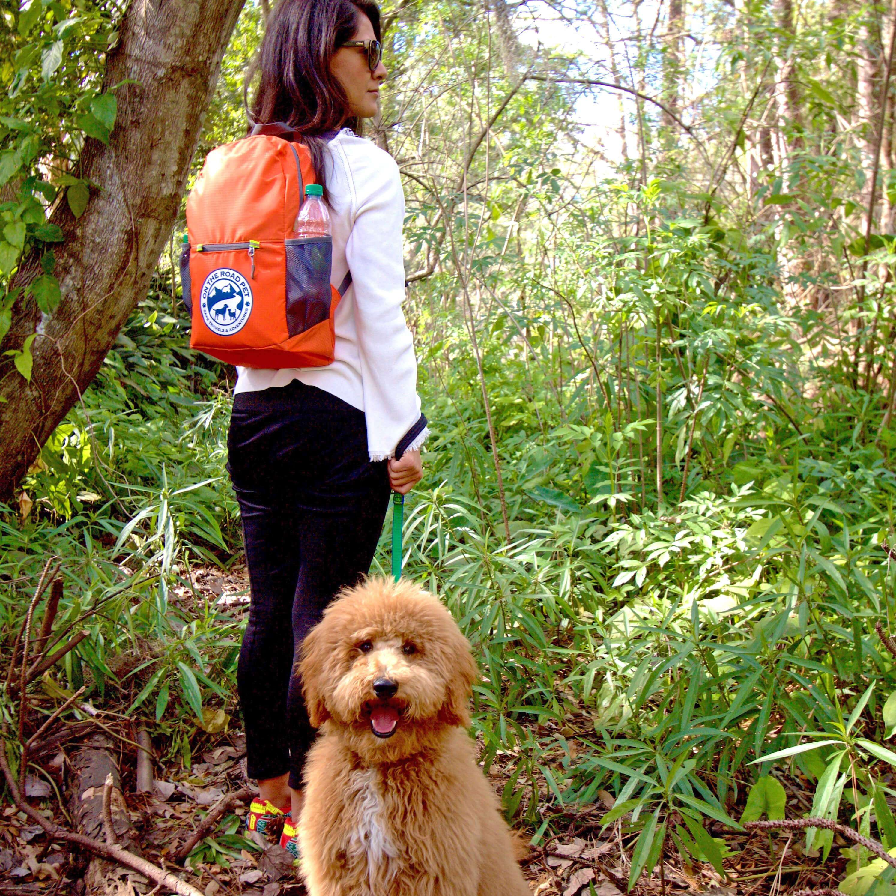 Hiking with Dog and On The Road Pet Emergency Day Bag