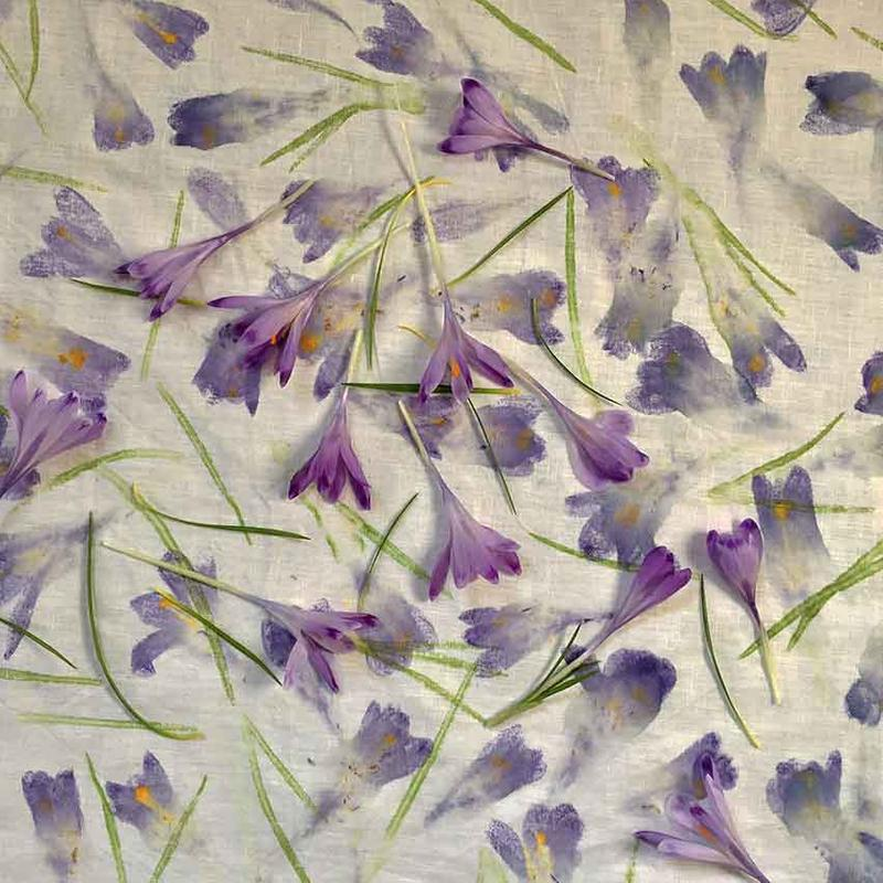 ELEANOR HUMPHREY - Join our natural dyeing and flower printing workshop