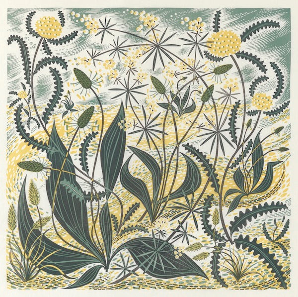 Angie Lewin, Sollas Sands. Linocut. Courtesy the artist and YSP