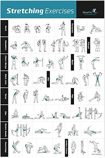 "Stretching Exercises Poster - 20"" x 30"""