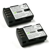 Panasonic DMW-BLF19 Battery (2-Pack) by Wasabi Power