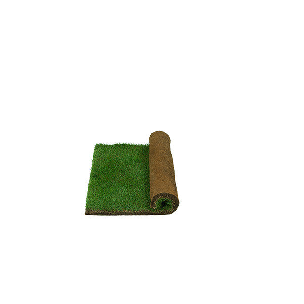 Real Grass Potty - Small