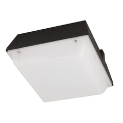 LED Outdoor Ceiling Mount