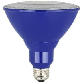 PAR38 Outdoor Colored PAR Lamp - Light Energy Designs Supply - 1