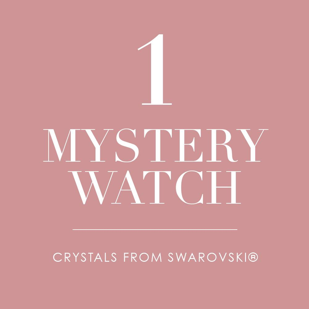 Mystery Watch Value Up to $100.00