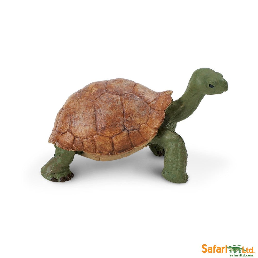 Wild Safari Wildlife Educational Painted Miniature Replica - Giant Tortoise