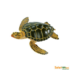 Wild Safari Sea Life Educational Painted Miniature Replica - Green Sea Turtle