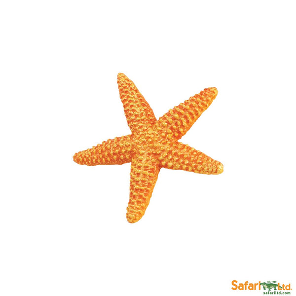 Wild Safari Sea Life Educational Painted Miniature Replica - Starfish