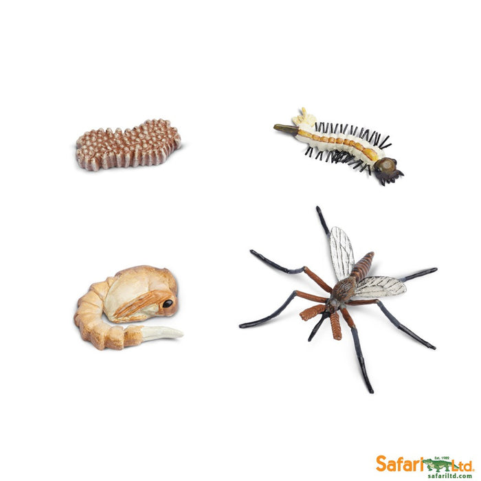 Painted Educational Replica Safariology Set - Life Cycle of a Mosquito