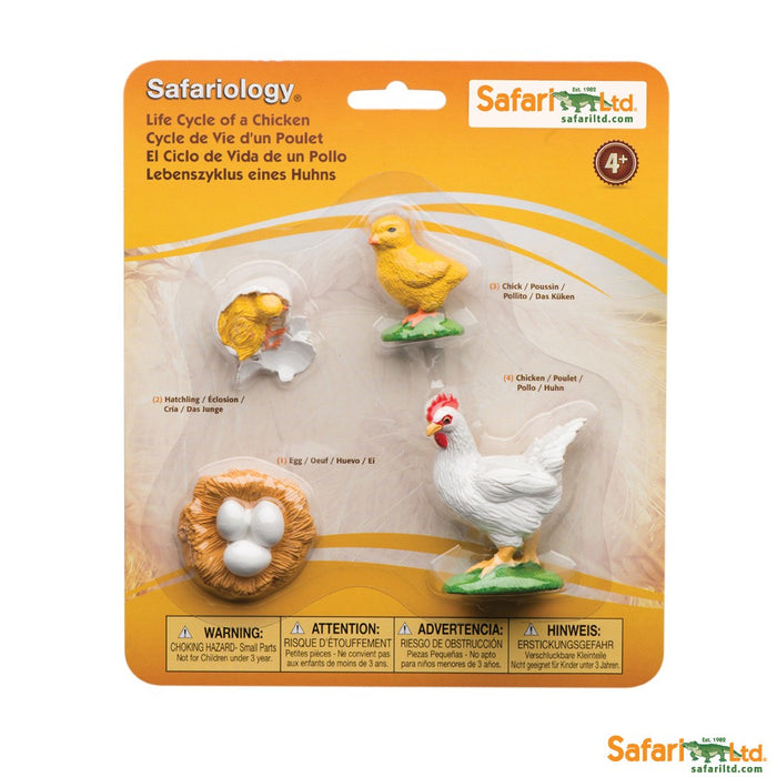 Painted Educational Replica Safariology Set - Life Cycle of a Chicken