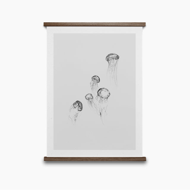 Jellyfish-Paper Collective-The Fjord Store