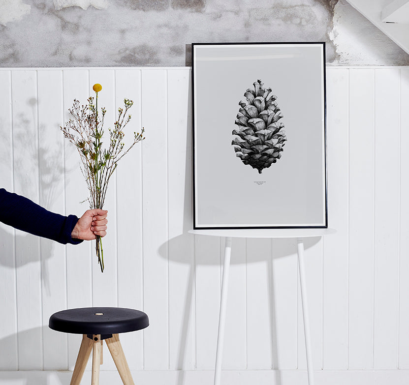 Pine Cone-Paper Collective-The Fjord Store