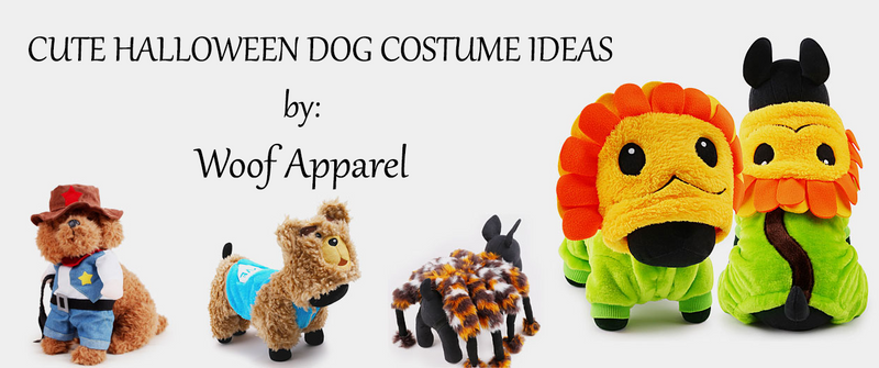 Top 10 Cutest Dogs' Costumes Perfect for Halloween