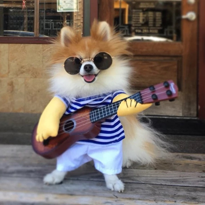 Cute Little Rockstar with Guitar Funny Costume for Dog