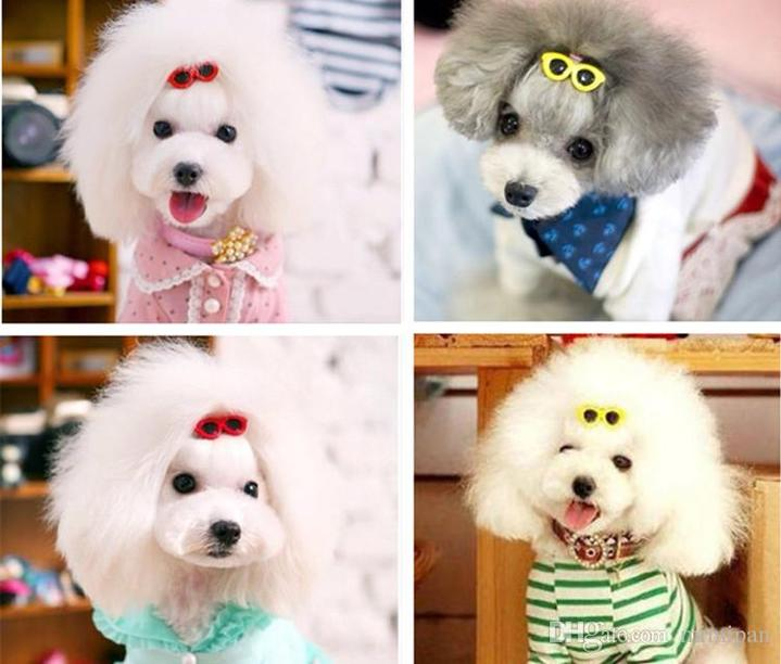 One Pack Colorful Sunglass Hair Clips For Your Cute Pups