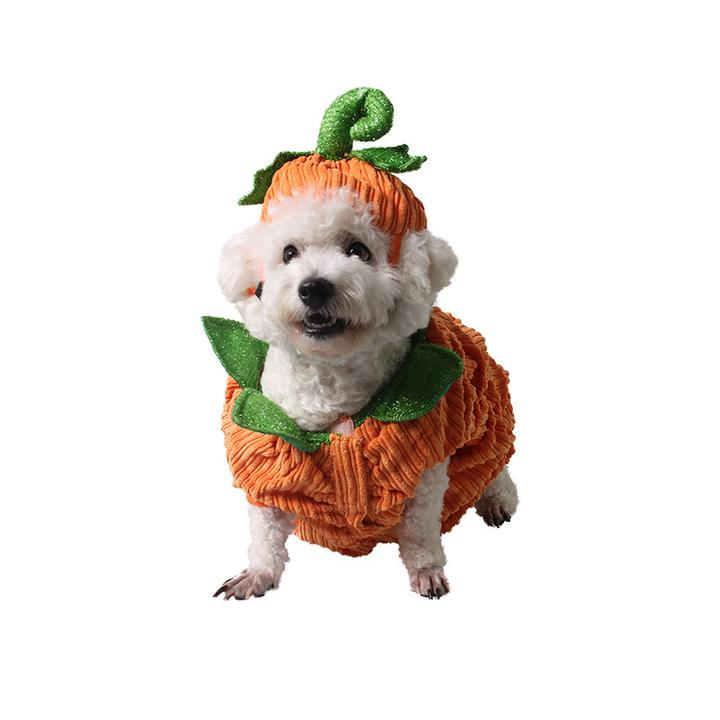 Smiling Pumpkin with Hat Cute Halloween Costume for Dog